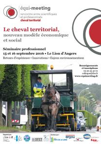 DIF-Affiche-Equimeeting-cheval-territorial-20161